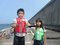 北港釣り公園 グレ&小アジの釣果