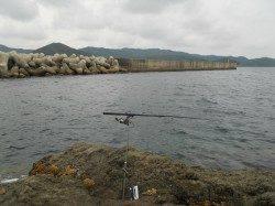 神谷崎へヤエン釣りに行ってきました
