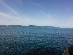夕日港で朝まづめエギング モンゴウが釣れました