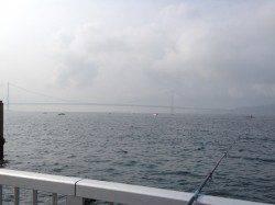 明石港 大サバ狙いも豆アジの釣果 ゴミは必ず片付けましょう