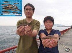 平磯海づり公園 ファミリーで投げ釣りの釣果