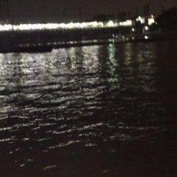 武庫川河口 ぶっこみでウナギ・キビレの釣果