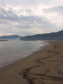 由良川河口 投げのキス釣りは朝7時頃に時合い