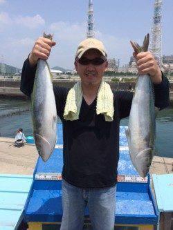マリーナシティ海洋釣り堀 活きアジでメジロヒット