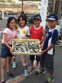 マリーナシティ海釣り公園 サビキでマイワシ・豆アジ好調