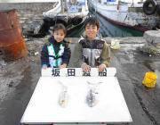 黒島の磯のアオリイカ〜ヤエンでの釣果です