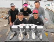 黒島の磯のアオリイカ釣果〜エギング&ヤエン