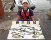 黒島の筏で年なしチヌ51cm!