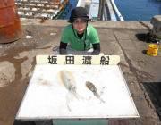 黒島の磯 エギングで1キロ級アオリイカの釣果