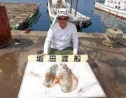 黒島の磯のヤエン釣果〜アオリイカ2.2㎏の良型