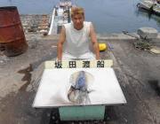 キロ前後の良型アオリイカ4ハイ〜黒島の磯のヤエン釣り
