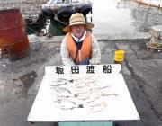 湾内の筏でチヌ・ヘダイ・チャリコの釣果