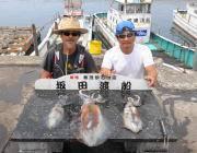 黒島の磯のアオリイカ釣果〜エギング&ヤエンで釣果あり