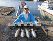 黒島の磯のエギング釣果〜アジカラーのエギでアオリイカ4ハイ