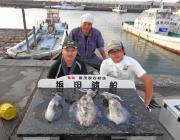 黒島の磯 ヤエンで2.0kgのアオリイカ