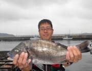 湾内の筏のチヌ釣果〜大きいチヌ釣れました♪