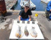 黒島の磯のアオリイカ、ヤエンでの釣果です