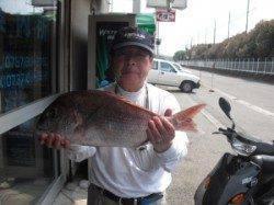大磯のカゴ釣りでマダイ58cm!