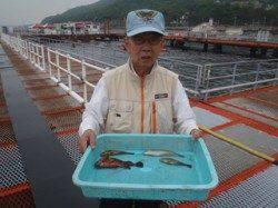 須磨海づり公園 投げ釣りでガシラ・ベラ・アイナメ