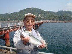 須磨海づり公園で大サバ43cmをキャッチ!