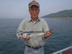 須磨海づり公園 カゴ天秤仕掛けでサバ42cm