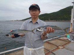 須磨海づり公園 連日大サバが釣れています