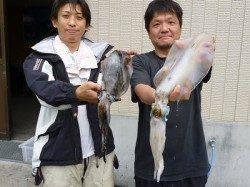 湯浅の磯 ヤエンでのアオリイカ釣果