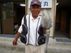 湯浅の磯 ウキ釣りでのアオリイカ