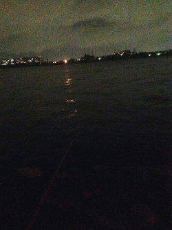 夏の夜のウキ釣りでハネ狙い〜アタリ多くおすすめです♪