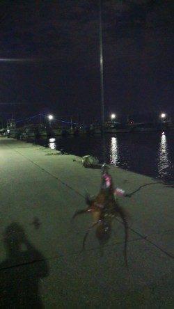 林崎漁港にタコ釣りに行ってきました
