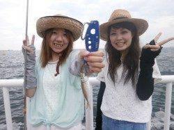 南港海釣り公園、サビキで豆アジが釣れています