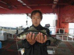 尼崎市立魚つり公園 ズボ釣りでハネ・落とし込みで年なしチヌ50cm