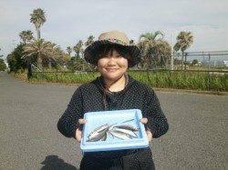 大阪南港魚つり園のサビキ釣果、熱中症対策準備してください