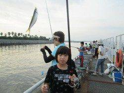 尼崎市立魚つり公園 サビキの釣果は午前中に集中
