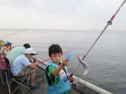 尼崎市魚つり公園 サビキで釣れる魚種で賑わってます