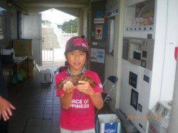 姫路市立遊漁センター お子様が良型アコウをゲット!