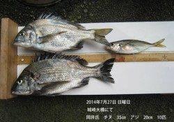 城崎大橋にてナイスサイズのチヌ・アジ