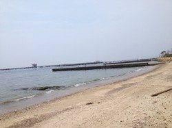 須磨海岸で投げ釣り 23.5cmの大キスも!