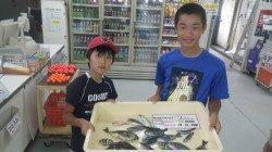 五目釣りファミリー釣果!アイゴ・グレ・サンノジ・シマアジ他多数