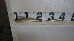 23.5cmのキスGET!堺堤防で投げ釣り釣果