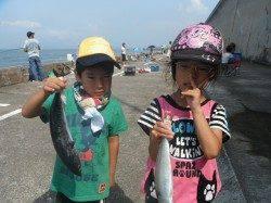 北港魚つり公園 ソーダガツオ・サバの回遊ありました