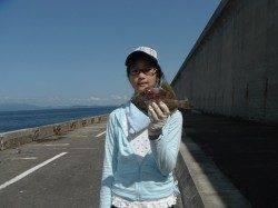 北港魚つり公園 釣りガールがカワハギ25㎝をキャッチ♪