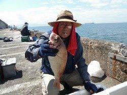 【30日】北港魚つり公園でマダイ42cm