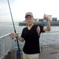 大蔵海岸にてサビキ釣り〜豆アジ・マイワシ・チャリコ