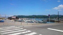 加太漁港 ちょい投げ釣りでキス&タコ&ハゼの釣果