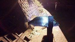 久美浜でセイゴ入れ食い。アジはボトム近辺で釣れました。