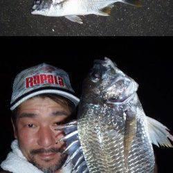 大阪南港 一週間ぶりのチニング釣行は二桁釣果