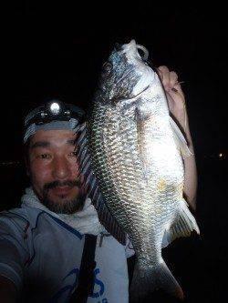 岸壁SLKでマチヌ釣りました♪