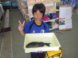 みなべ堺漁港にて見事グレを釣りました!お子様の釣果