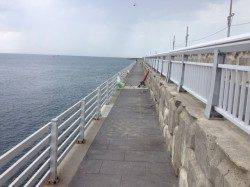 新浜漁港でガシラ・アイナメなど〜ブラクリや胴付き仕掛けで20匹以上